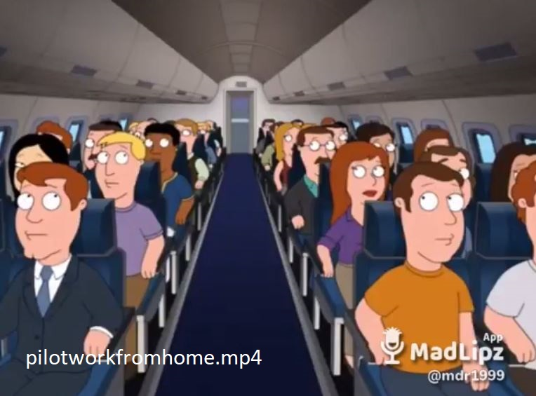 pilotworkfromhome.mp4